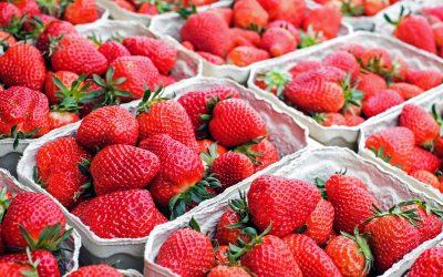 strawberry, protein shake