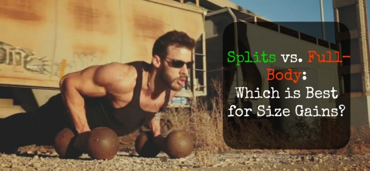 Splits vs. Full-Body: Which is Best for Size Gains?