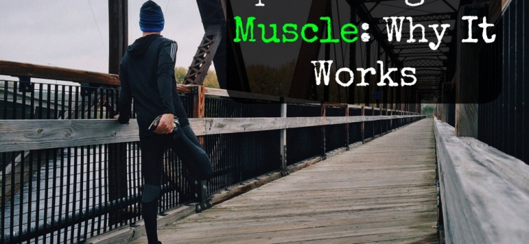 Sprinting for Muscle